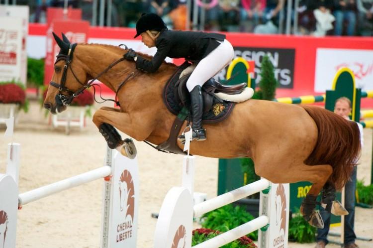 Articulaciones caballo glucoflex