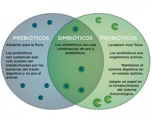 probioticos para caballos 3